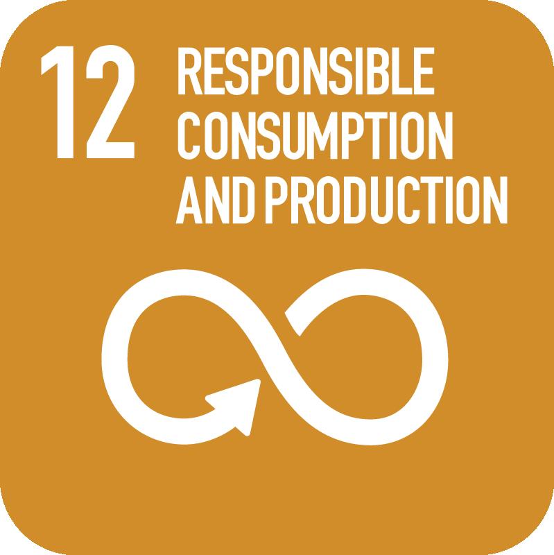 12-Responsibile-Consumption.png