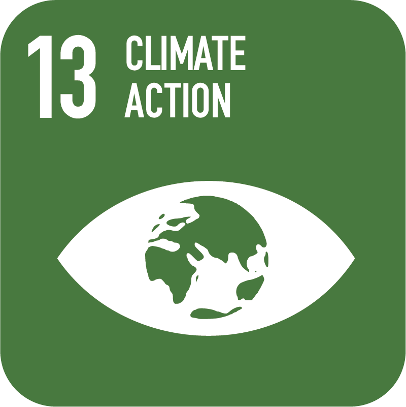 13-Climate-Action.png