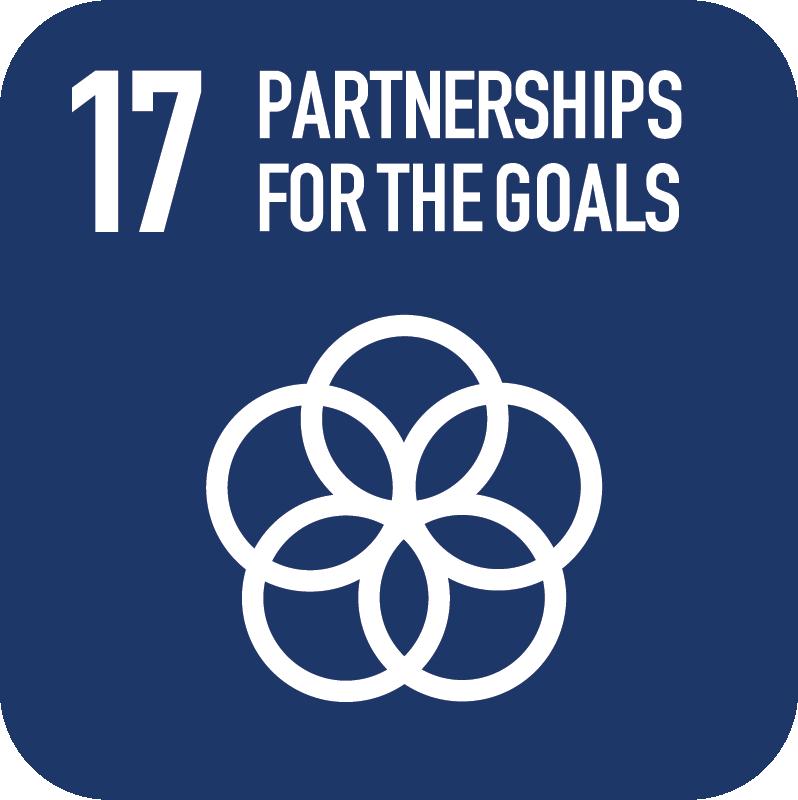17-Partnerships.png