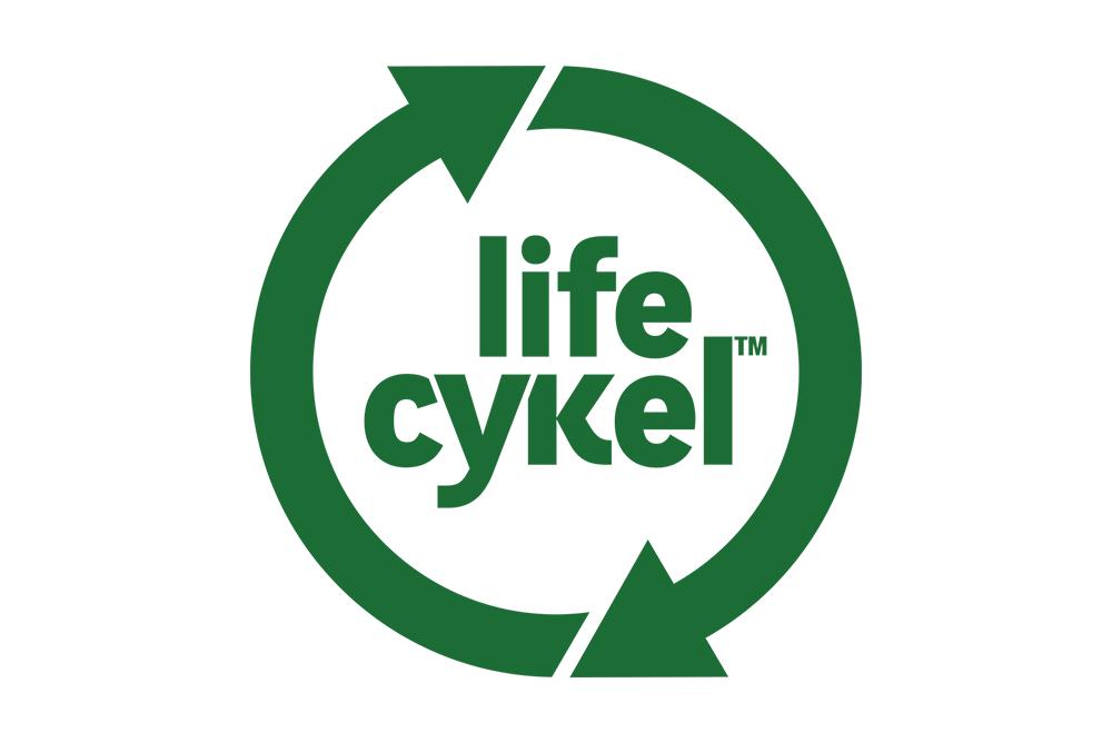Life-Cycle.png